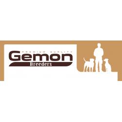 Gemon Premium Puppy & Junior Chicken 31/16