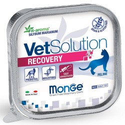 Pâtées Chat VET Solution RECOVERY 6 x 100 grs